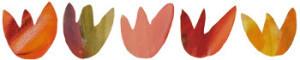 2014-11-20_tulipansor-350x70-300x60